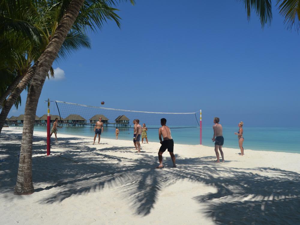 Suchergebnis auf Amazonde fr: palmen strand